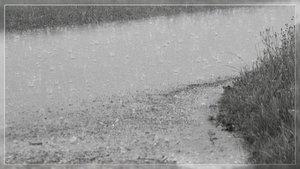 Regentropfen.jpg