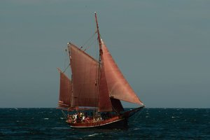 Sail 4.jpg