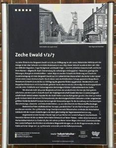 UT-Ewald-SD10 - IMG07121_1.jpg