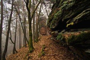 Pfalz Geiersteine comp_0001.jpg