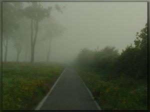 nebel0018.jpg