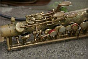 Musiker-SD14 - SDIM6816_1.jpg