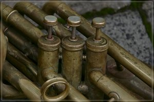 Musiker-SD14 - SDIM6817_1.jpg