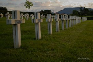 AV_Friedhof 5.jpg