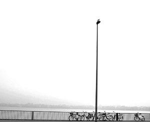 alster-fahrräder-nebel2-ff-.jpg
