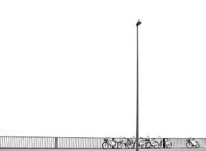 alster-fahrräder-nebel3-ff.jpg