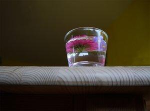 blumen-glas-1.jpg