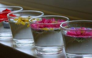 blumen-glas-2.jpg