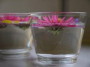 blumen-glas-3.jpg