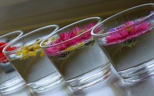 blumen-glas-4.jpg