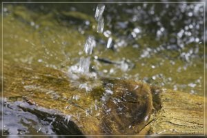 Wasser-SD10 - IMG07432.jpg