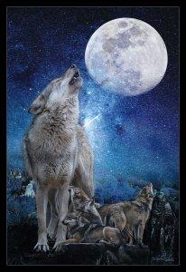 comp_Wolfsmond 2.jpg