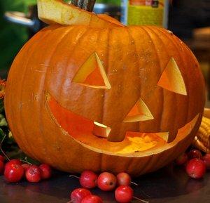 comp_happy halloween dr.jpg