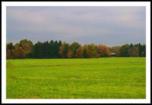 Schuppen in LandschaftSchuppen in LandschaftIpweger Moor Schuppen in Landschaft 1.jpg