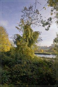 Ruhrwiesen-SD10 - IMG09405.jpg