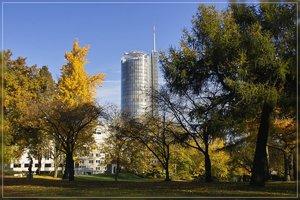 Herbst-IMG03159.jpg