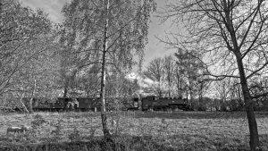 Zittauer Schmalspurbahn.jpg