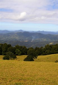 Sealy Lookout 3.jpg