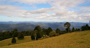 Sealy Lookout 4.jpg