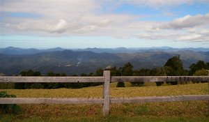 Sealy Lookout 2.jpg