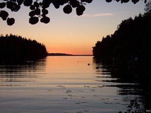 Schweden Midsommar 2005 (179).JPG