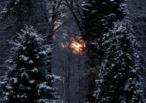 Sonnenuntergang...diskret_.jpg
