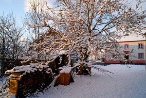 winter4_k.jpg