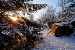 winter5_k.JPG