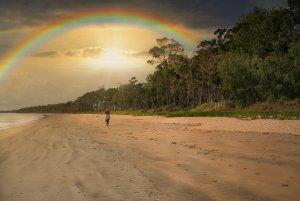 1500_oRA6500160_Lu_Rainbow.jpg