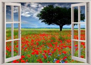 Fensterbild ff.jpg