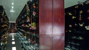 Mini_Shanghai_Scan033_2009.jpg