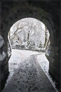 Winter-SD15 - SDIM278.jpg