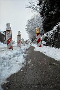 Winter-SD15 - SDIM320.jpg