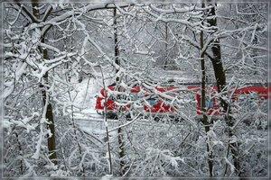 Winter-SD15 - SDIM289.jpg