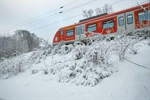 Winter-SD15 - SDIM317.jpg