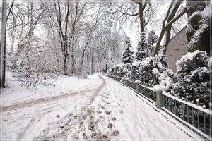 Winter2-SD15 - SDIM279.jpg