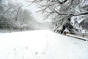 schneesturm_DSC0490.jpg