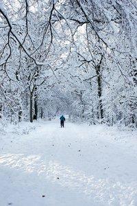 winter2010-_DSC0551.jpg