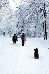 winter2010-_DSC0556.jpg