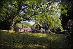 Hügelpark-SD10 - IMG10797.jpg