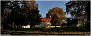 Herbst_gum4.jpg