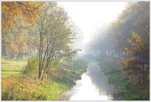 Herbst_nebel.jpg