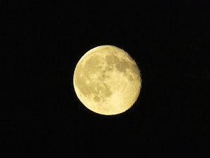 Mond1.jpg