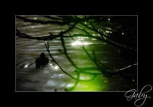 Herbst-004.jpg