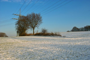 Winter09-SD14 - SDIM3219.jpg