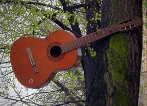 Baumgitarre1000.jpg