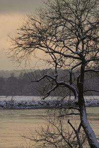 Winter-SD10 - IMG5497.jpg