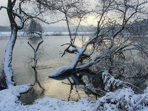Winter-SNV32835.jpg