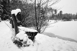 Winterspaziergang2_1 Kopie.jpg
