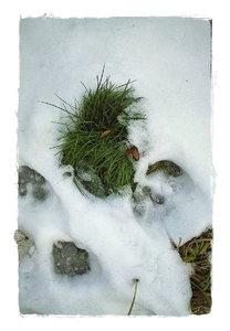 Winter-DP1 - SDIM1381_1.jpg